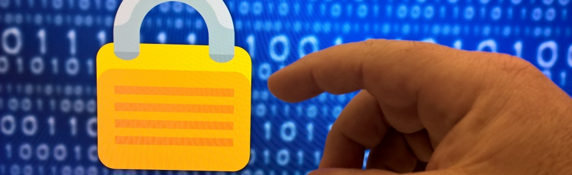 Information Security / Cyber Security Lead